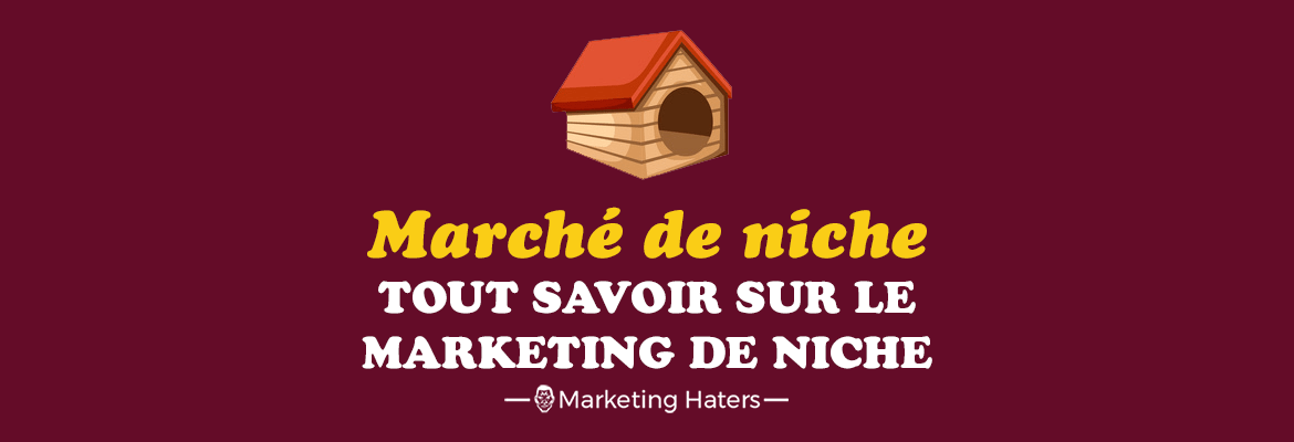 marché de niche marketing